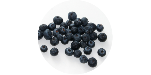 Blueberry Extra (TPA)