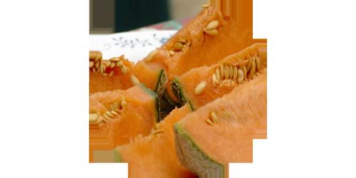 Melon Cantaloupe (FA)
