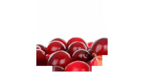 Cranberry (FLV)
