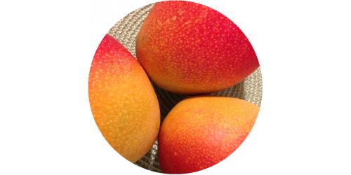Mango (FLV)
