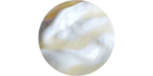 Greek Yogurt (FLV)