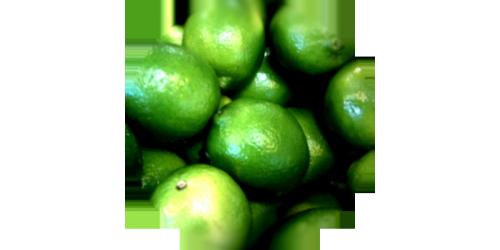 Lime (FLV)