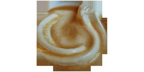 Cafe Creme (FW)