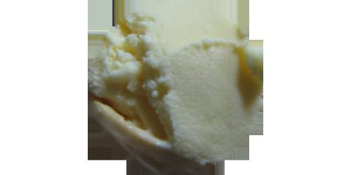 Vanilla Ice Cream (LB)