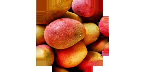 Mango Juice (VTRN)