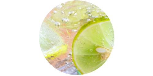Lemon Lime Soda (WFSC)